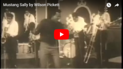 Wilson PIckett sings Mustang Sally LIVE
