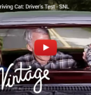 WATCH: Toonces the Driving Cat: Driver's Test – SNL
