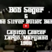 bob seger and the silver bullet band in concert largo maryland 1980